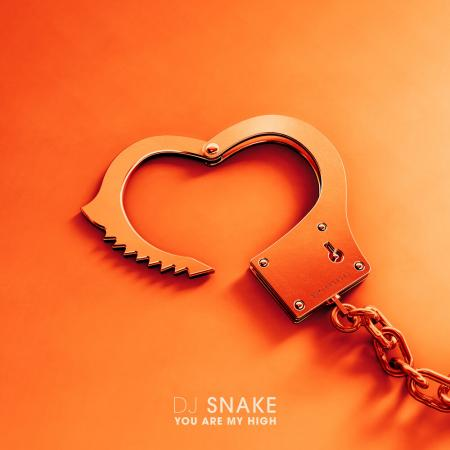 DJ Snake You Are My High