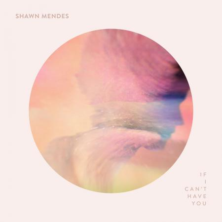 Shawn Mendes - If I Cant Have You